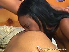 Bisexual studs sharing black chick