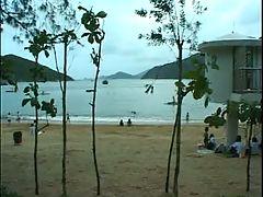 Spycam Beach Toilet Hidden Cam
